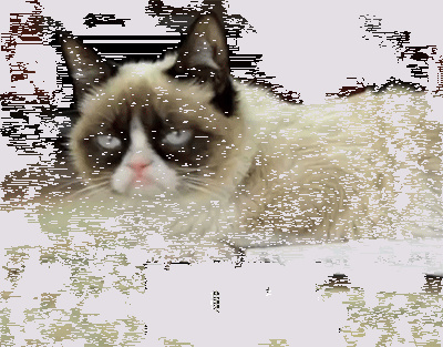grumpy-cat-nope.gif