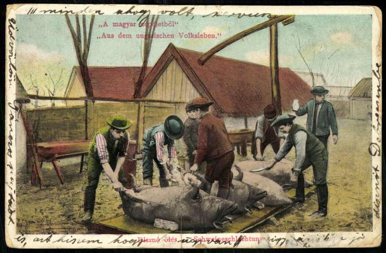 """""""A magyar népéletből"""" A képekre kattintva aHungaricana oldalán eredeti méretben is megnézheti a képeslapokat és térképeket."""