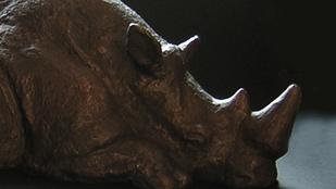 Ellopták az Állatkertből a látássérülteknek készült orrszarvú szobrot