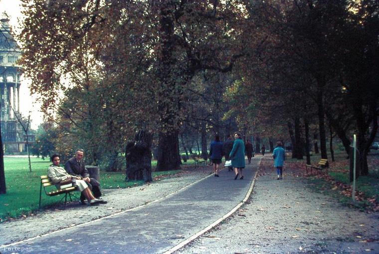 1977, Margitsziget