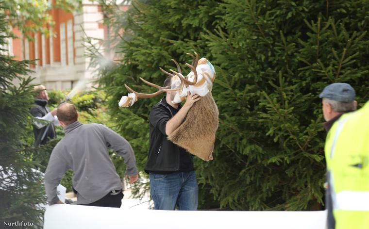 A szorgos segítők hoztak fenyőfákat, hiszen nélkülük nem lehet téli táj