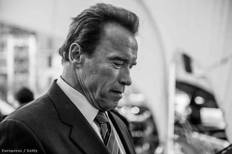 Arnold Schwarzenegger a Tribeca fesztiválon.