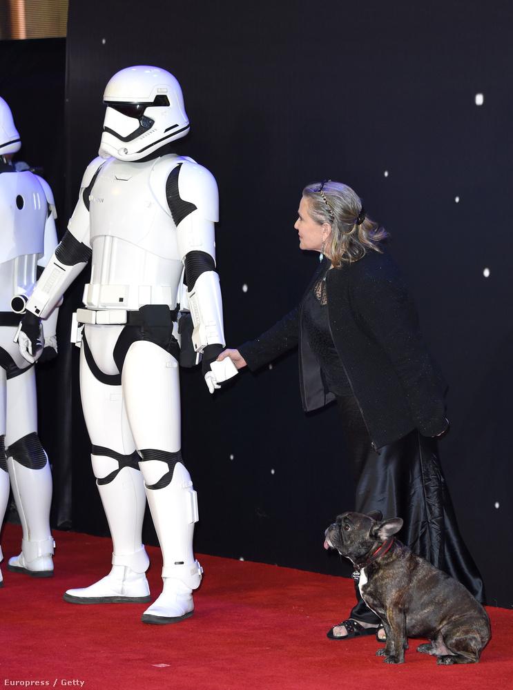 Az úgy volt, hogy Carrie Fisher kutyájával, Garyvel ment a Star Wars: Az ébredő Erő londoni premierjére.