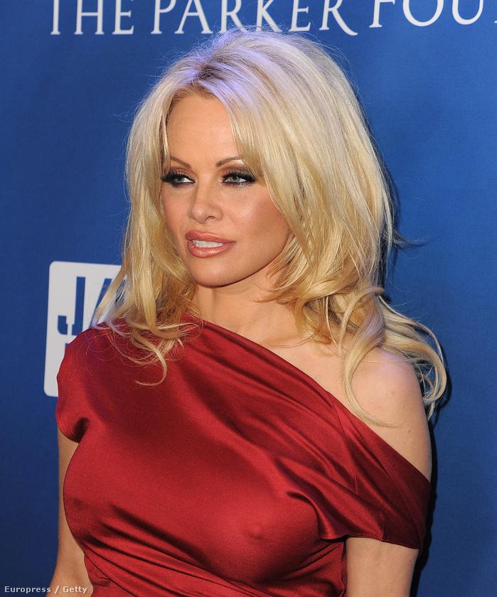 Pamela Anderson Sean Penn jótékonysági gálájára ment el
