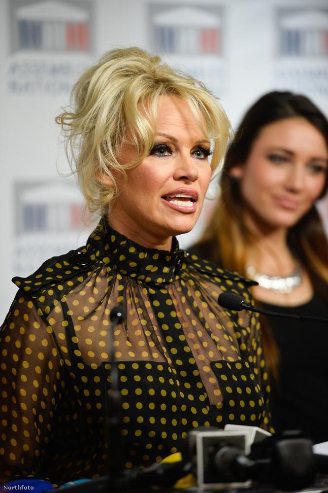 Pamela Anderson az ideje nagy részét újabban annak szenteli, hogy különböző eseményeken az állatvédelem fontosságára hívja fel a figyelmet