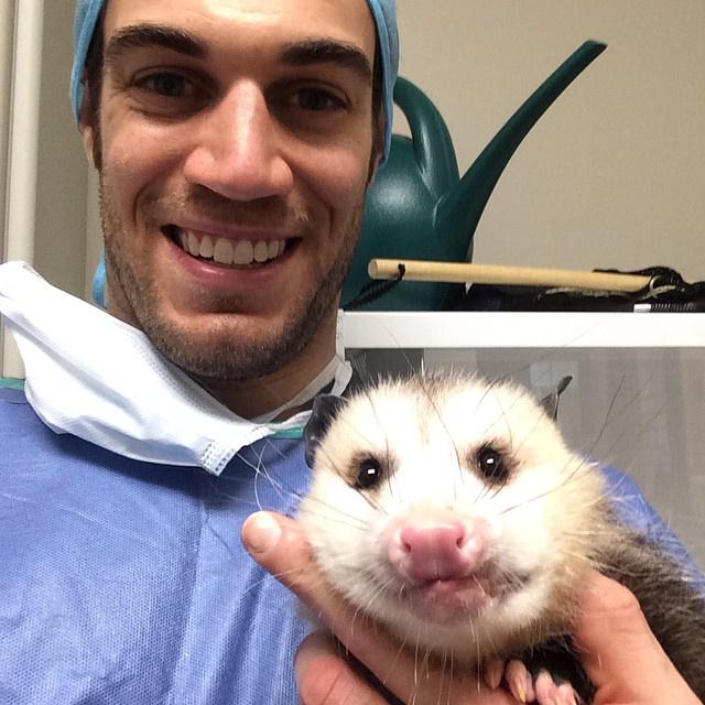 Itt nehéz eldönteni, a doki vagy az oposszum a jóképűbb.