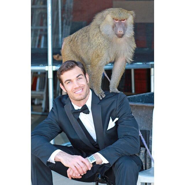 Kihagyjuk a ziccert, hogy a majom és a szmoking szavakkal vicces mondatot alkossunk.
