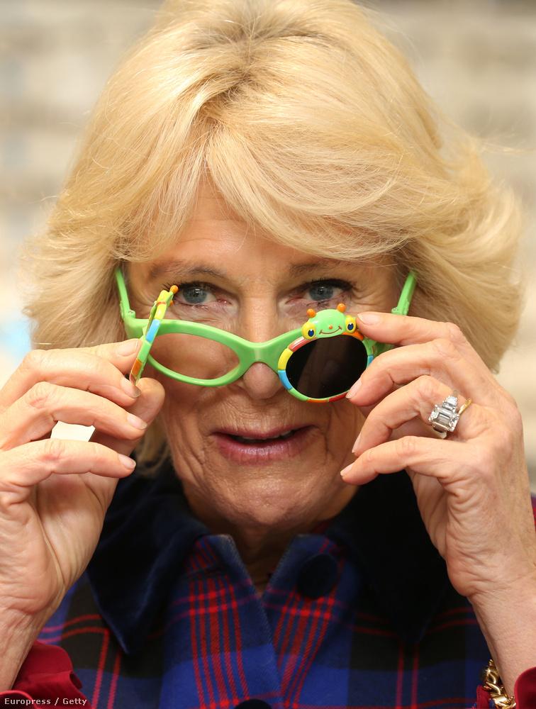 A brit királyi család tagjairól rendszeresen készülnek vicces fotók, ha hivatalból el kell látogatniuk valahova