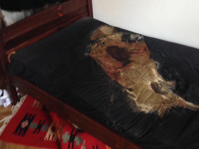 Ebben a lakásban valaki meghalt, de csak hetekkel később találták meg a holttestet.                         Amellett, hogy egy ilyen helyszínen borzasztó a szag, a takarítóknak a bogarakkal és a kukacokkal is le kell számolniuk.