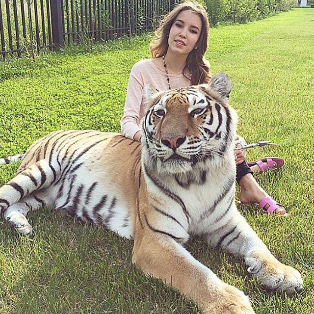 A gazdag oroszoknál az állatokkal pózolás a menő, nyilván minél extrémebb az állat, annál jobb
