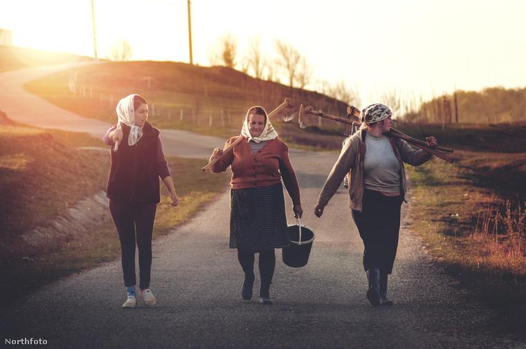 Munkából hazatérő asszonyok