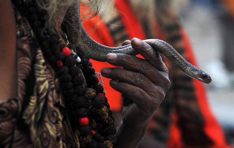 Egy másik legenda szerint Parvati istennő megkérdezte Sivát, hogy melyik a kedvenc rituáléja, napja
