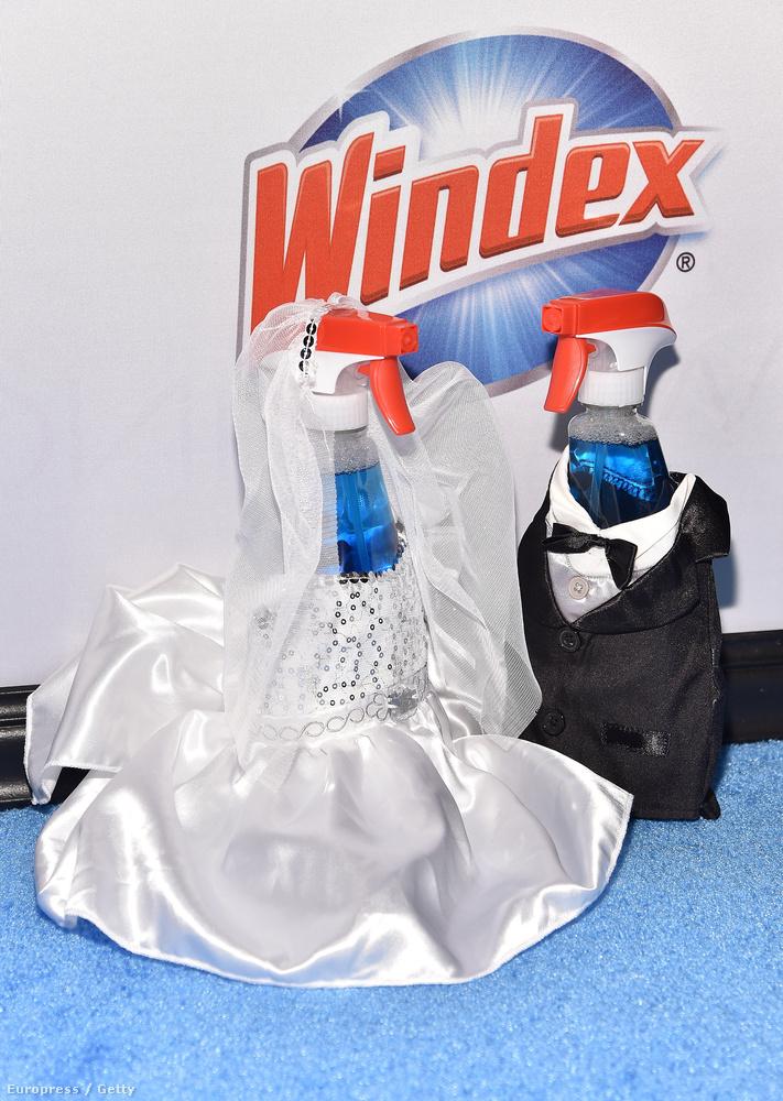 Mindennél jobban szerette a Windex nevű csodaszert