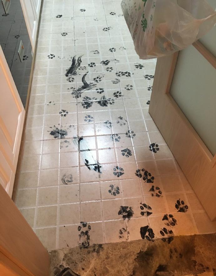 A fürdőbe is benézett, talán lábat mosni.