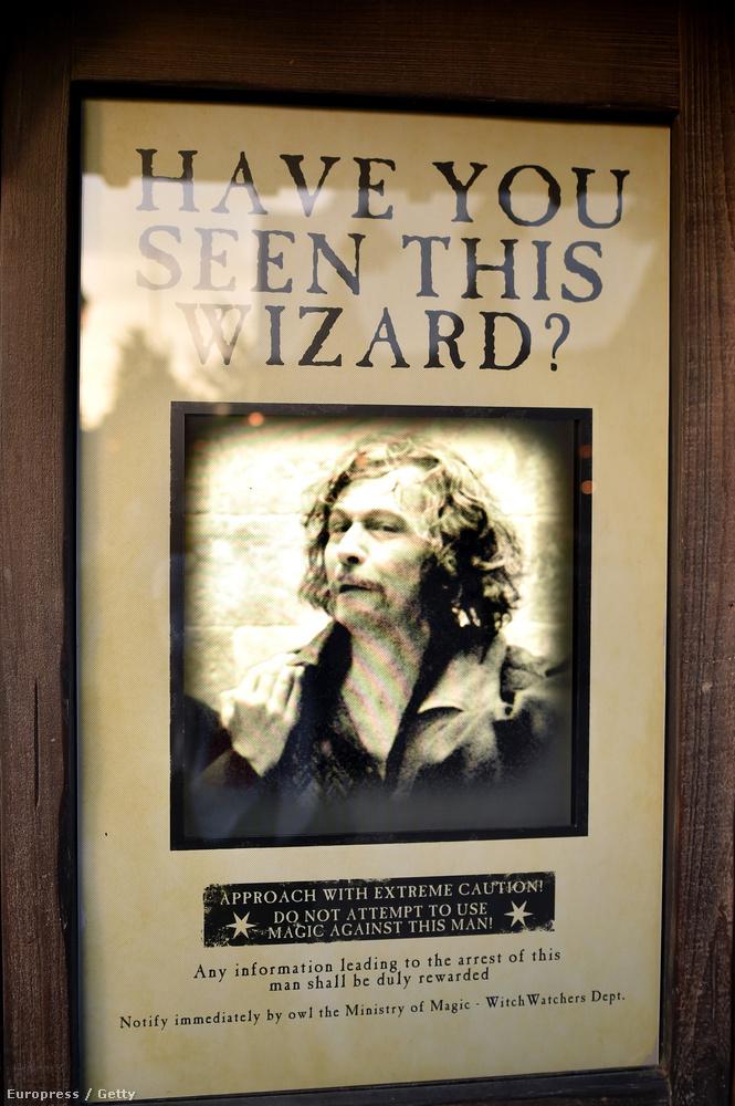 Elnézést! Látta ön ezt a varázslót?