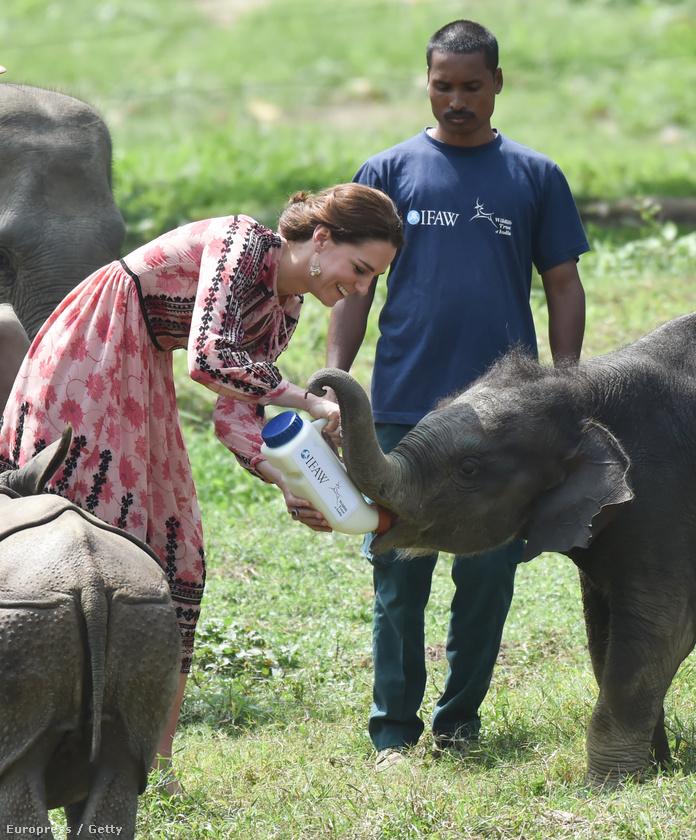 Ha figyelmesen olvastak minket a minap, akkor tudhatják, hogy Vilmos és Katalin, az (egyik) angol hercegi pár éppen Indiában és Bhutánban körutazik.
