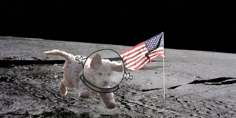 Bár Lajka kutya is nagyon aranyos volt, azért itt egy másik verzió is az űrkutyára