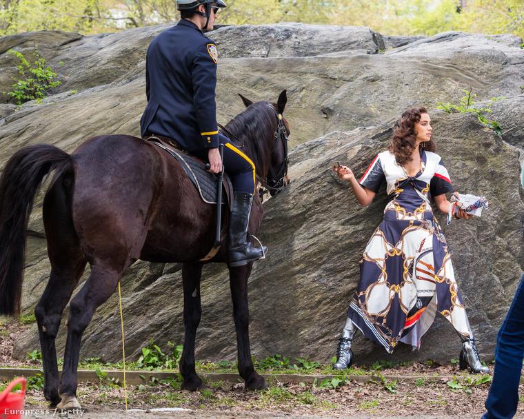 Shayk valami rosszat csinált a parkban, és most eljött érte a lovas rendőr.