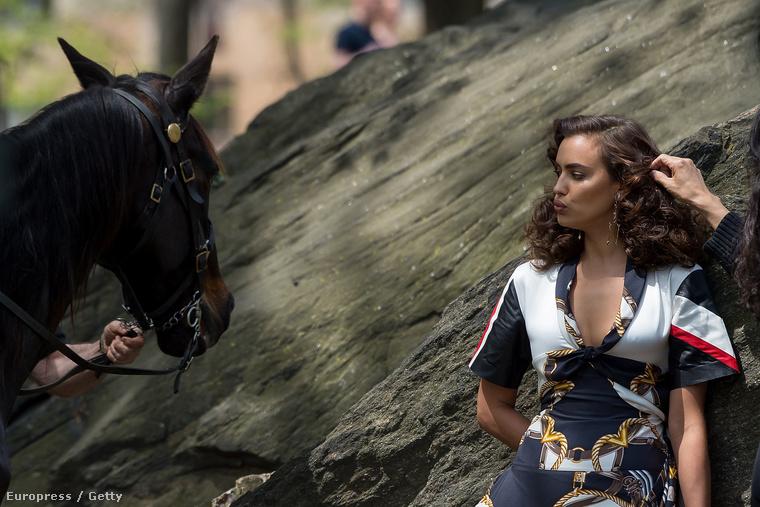 még a ló is elunta a dolgot