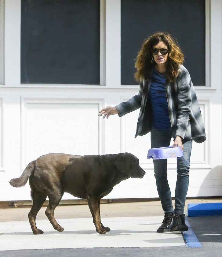 A legfrissebb képeken Beverly Hillsben sétáltat kutyát, kissé kócosan, de ember legyen a talpán, aki teljes díszben ugrik le mindig a kisboltba, vagy futtatóra