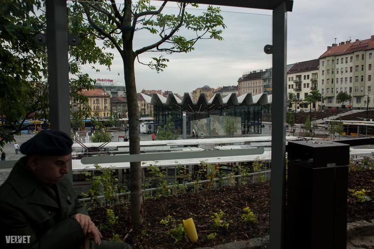 Bizonyos szögekből azért sokkal többnek tűnik a zöldfelület, mint a beton