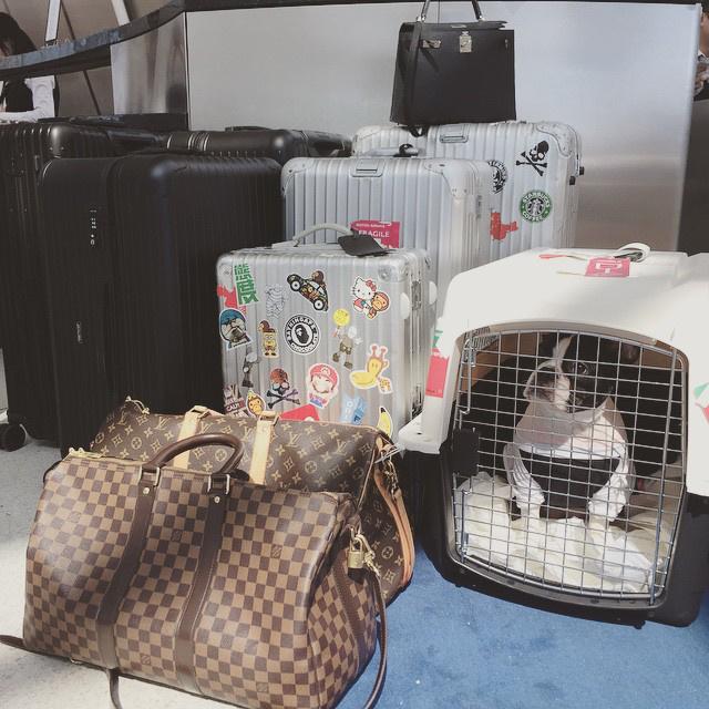 Így néz ki a poggyásza, ha elutazik valahová.