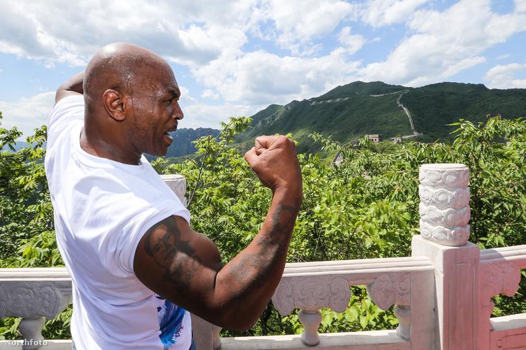Mike Tyson Kínában van és persze nem hagyhatta ki az ország egyik legnagyobb nevezetességét, a Kínai nagy falat