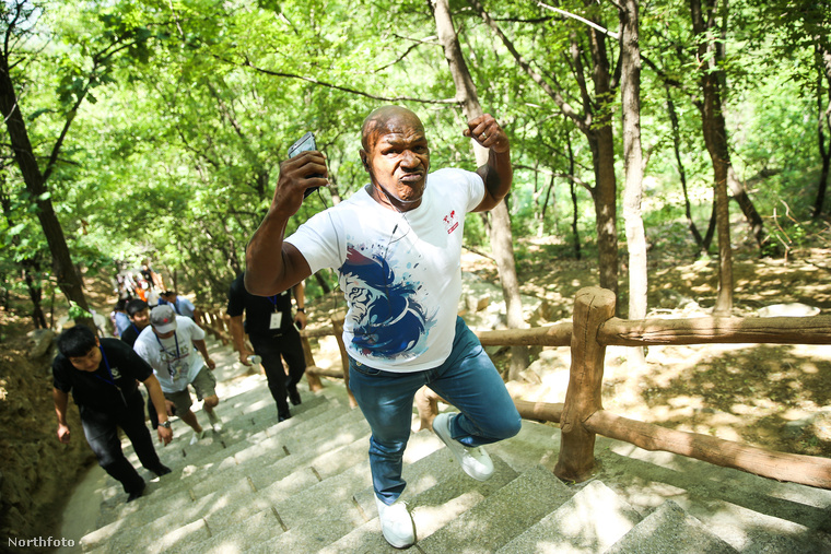 Ja, Mike Tyson pedig megmászta a Kínai nagy falat, és büszke rá
