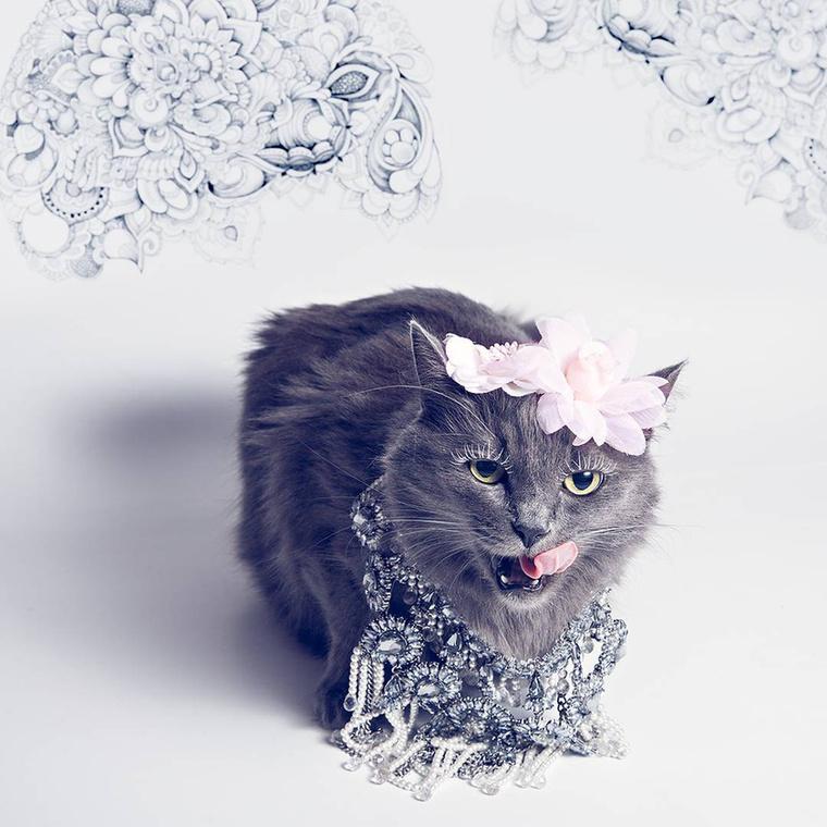 A ruhák és az ékszerek, plusz a macska és ez a csábos szájnyalás viszont valódi!!