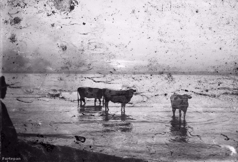 Nem csak a Balaton változott sokat az elmúlt száz évben, de a fürdőruha divat is