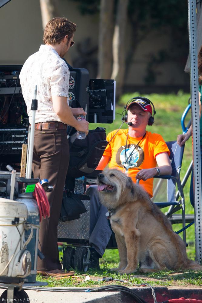 Gosling az állatot 2000-ben egy Los Angeles-i menhelyről fogadta örökbe,  és azóta elválaszthatatlanok