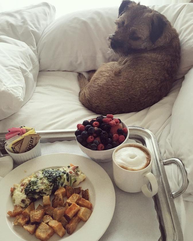 Mihalik Enikő ágyba vitte a reggelijét,                          és úgy látszik, nagyon jól nevelt a kutyája, hogy nem rohant rá azonnal a kajára