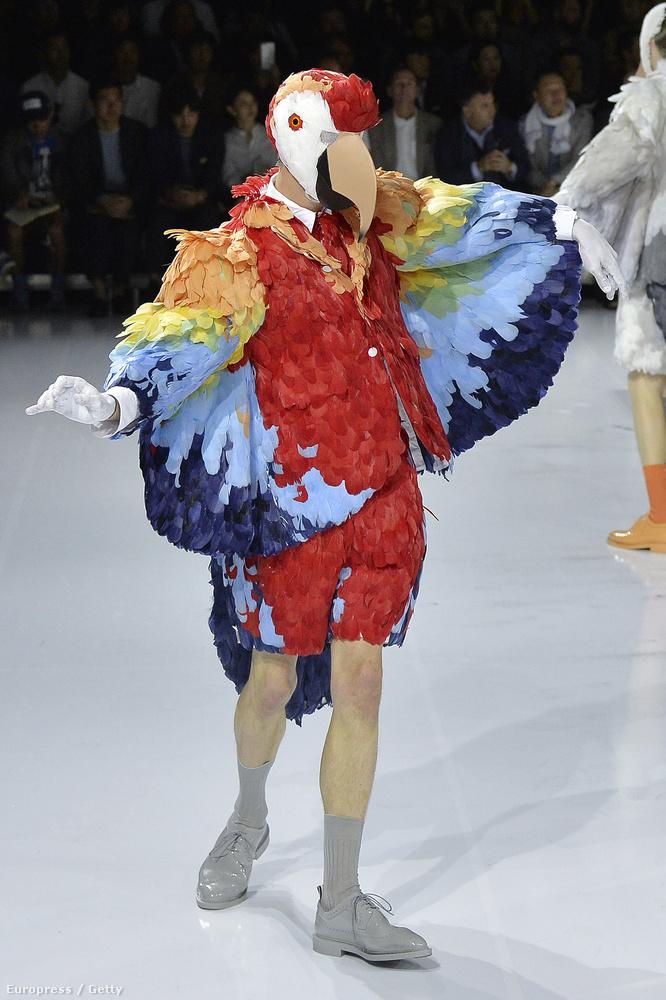 Ön szerint miért volt papagájjelmez egy párizsi férfidivat-bemutatón? A helyes megfejtéseket szerkesztőségünk címére várjuk.