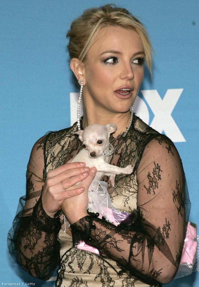 Britney Spearsnek van egy komplett, meg nem jelentetett albumaA címe Original Doll, és Spears még 2004 decemberében beszélt róla egy rádióinterjúban