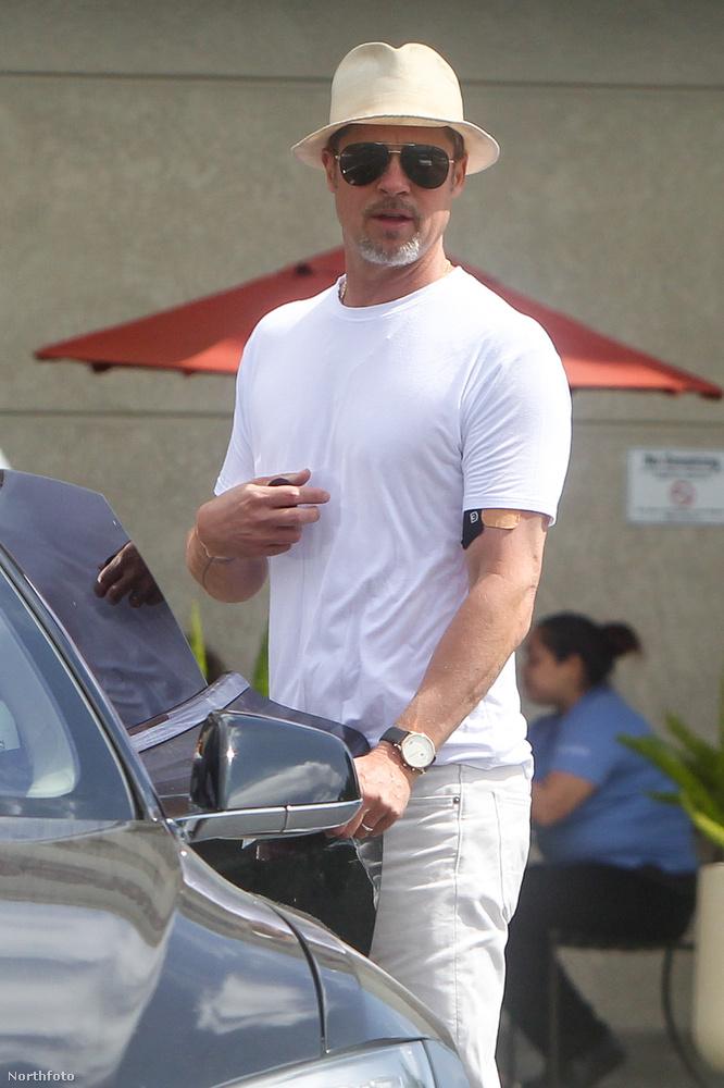 Brad Pitt sem volt az a feltűnő jelenség, leszámítva persze azt, hogy ő Brad Pitt.