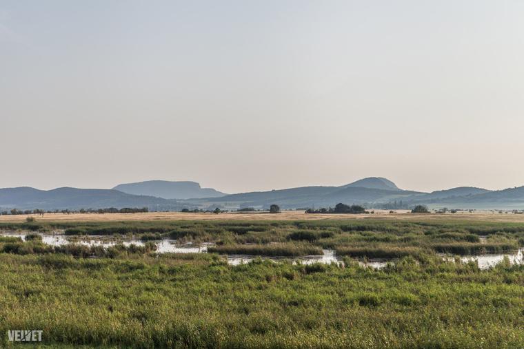 Egy héten át foglalkozunk a Káli-medencével, ami csak pár kilométerre van a Balatontól