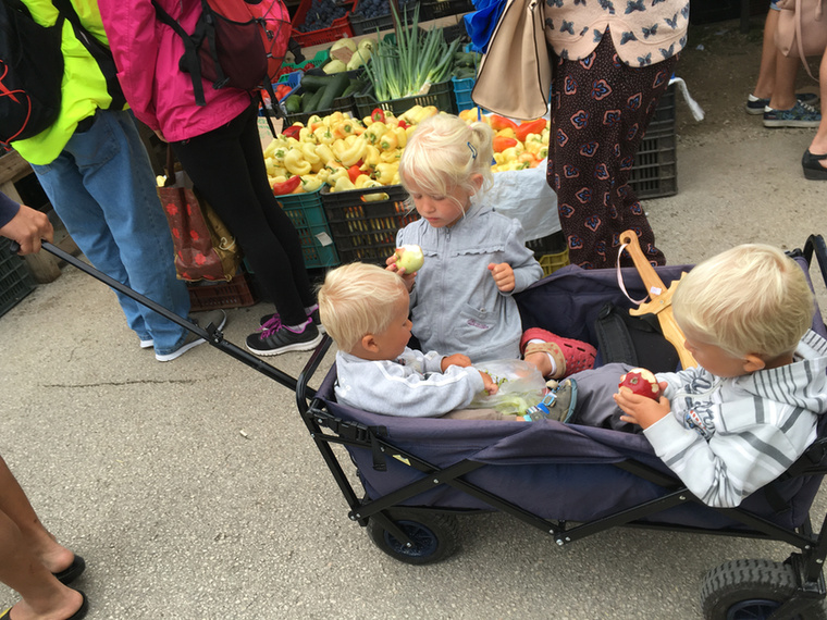Annyira nagy ez a piac, hogy utánfutóval kell szállítani a gyerekeket.
