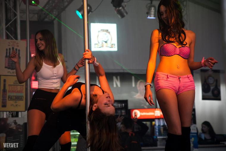 Ha minden igaz, a fesztivál ideje alatt húsz táncos szórakoztatja a nézőket, déltől hajnali hatig