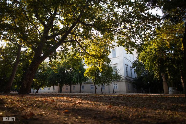 Most még tehet egy őszi sétát a nosztalgikus Múzeumkertben, a felújítás pár hét múlva kezdődik.