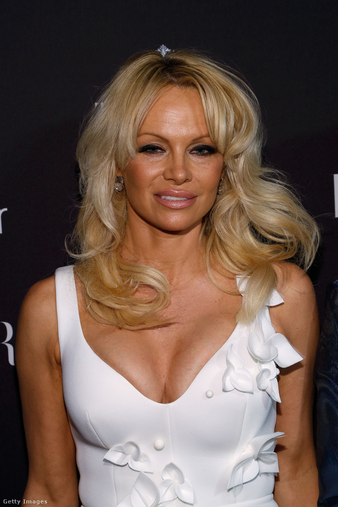 Egyébként Pamela Anderson is ott volt, nem csak magához, de mindenki máshoz képes is erősen visszafogott külsővel.