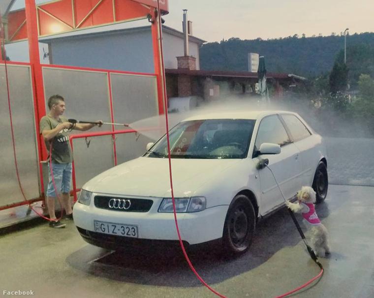...vagy lemosni apu kocsiját!