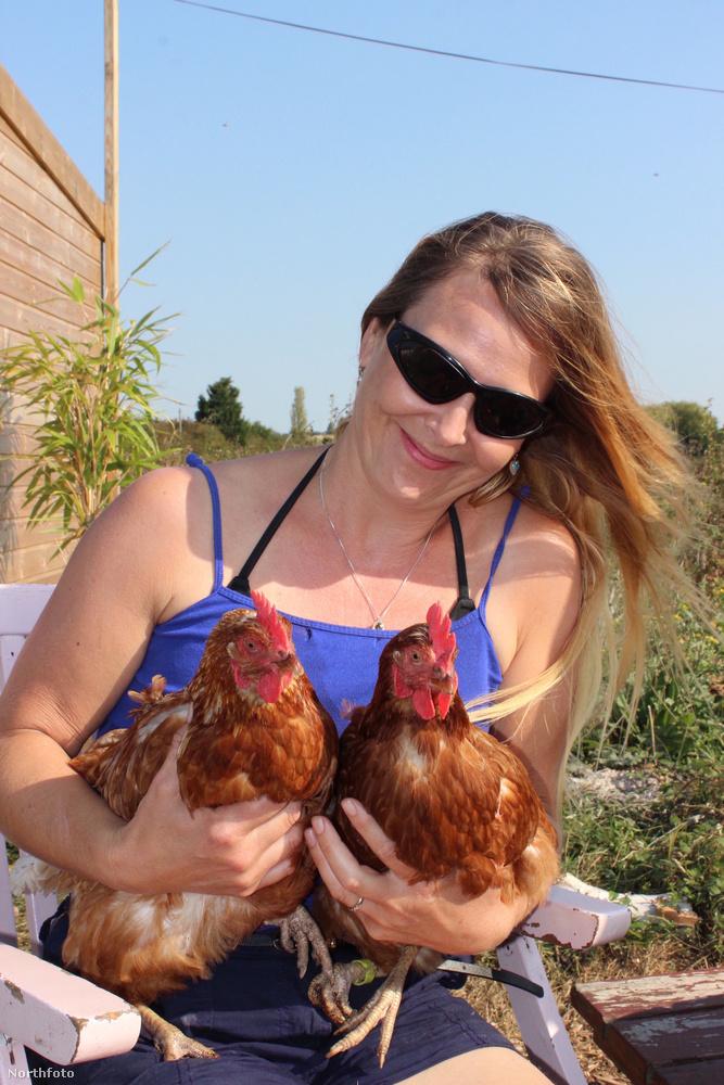 A ház mellett önellátó farmra törekednek, a csirkék már megvannak, így tojás is lesz