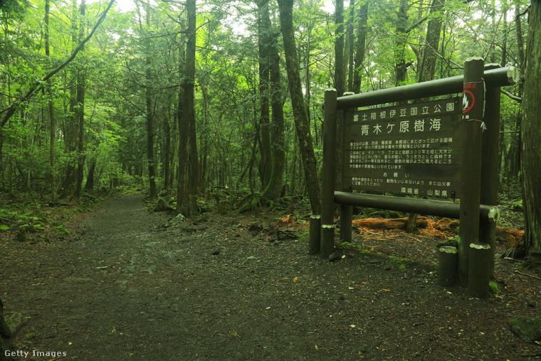 Japánban van egy Aokigahara nevű erdő, amit csak az öngyilkosok erdejeként emlegetnek