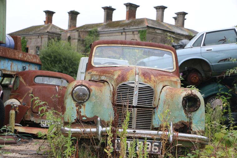 A telek amúgy kincseket rejt: több letűnt korszak autólegendája lapul a bokrokban, még az 1940-es évekből is