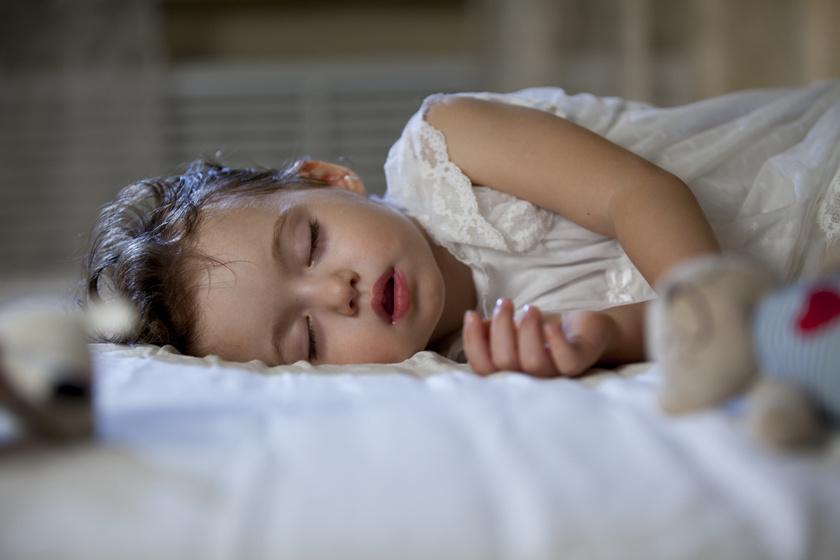 a korai alvás lefogyhat fogyás 5 kg 1 hónap alatt