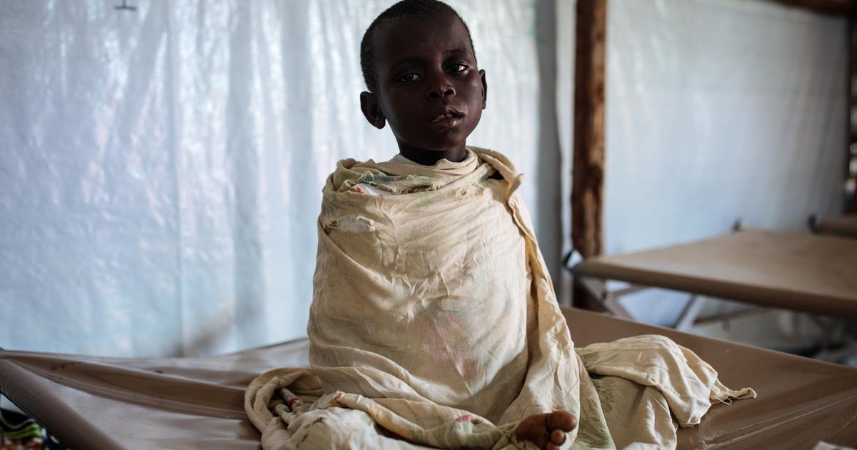Erdélyi magyar kutatók jöttek rá, hogy lehet több malária elleni szert készíteni