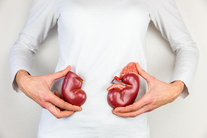 diéta egy beteg vese számára