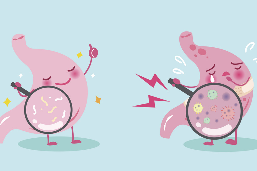fogyás és baktériumok elszaporodása