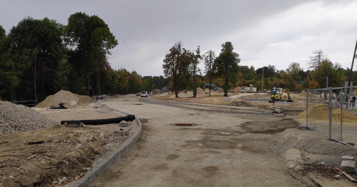 220 fát vágnak ki egy óriásparkoló kedvéért a Normafán