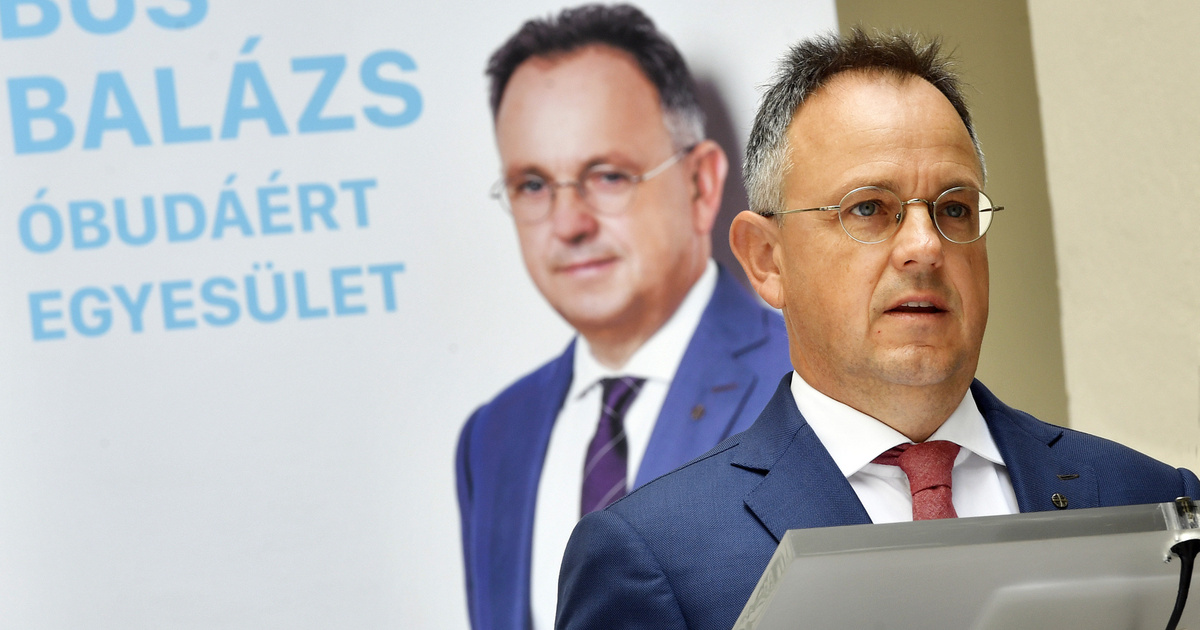 Óbuda fideszes polgármestere is sokallta a Hajógyári-szigeten tervezett fairtást